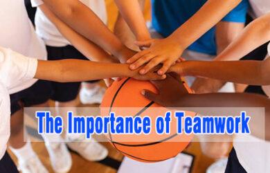 the importance of teamwork coastalfloridasportspark